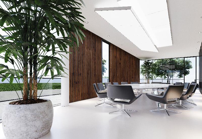 entorno-laboral-saludable-comodidad-tendencia-verde