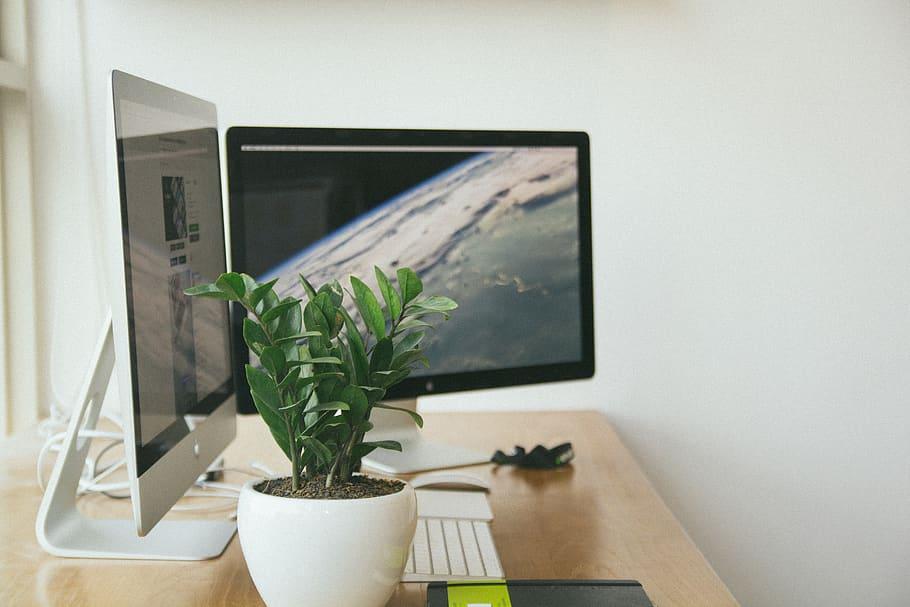 oficina-sostenible-espacio-ecoamigable-luminoso-verde